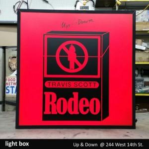 Up & Down Light Box